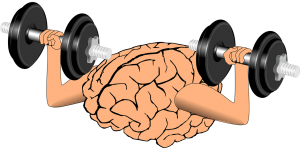 The brain is like a muscle